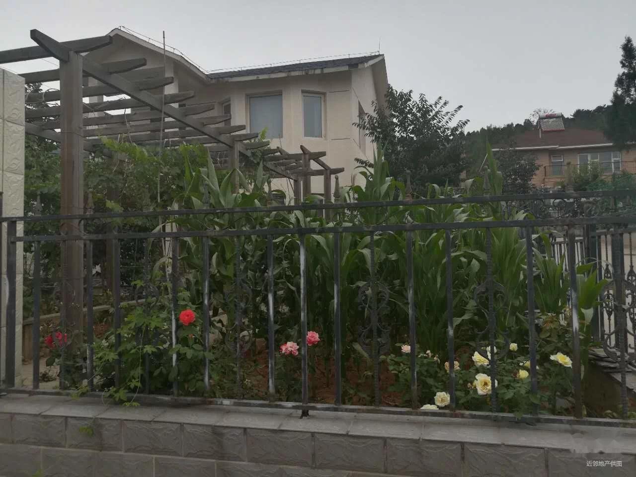 依山傍水一套2层别墅出售 山中别墅 视野好风景好带50平小院