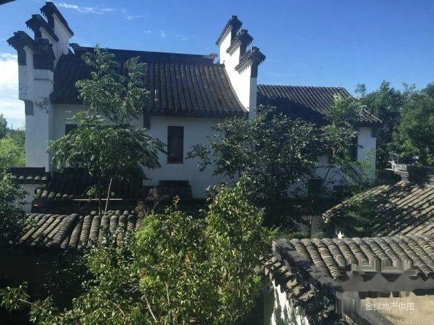 龙山新新小镇 苏园中式独栋 花园500平 看房随时