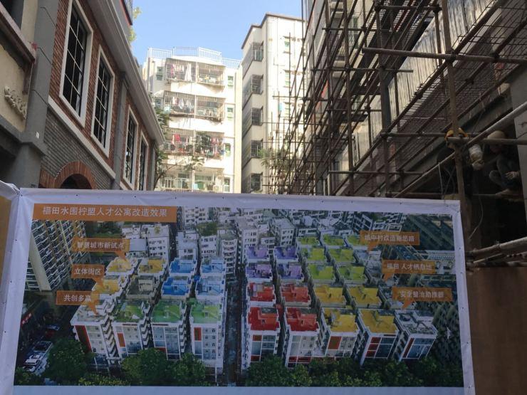 深圳绿化研究_深圳屋顶绿化_合肥绿化草坪绿化