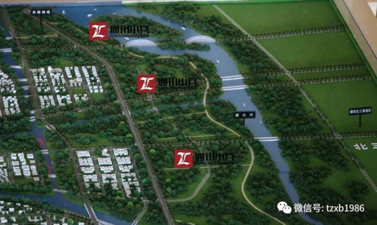 河北西集运河风景区