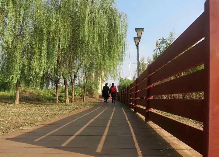 长乐公园的前身是动物园,是老西安小时候最喜欢的地方.