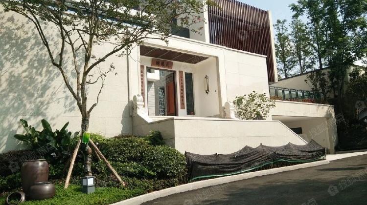 半山纯独栋别墅,中式现代全落地窗 大庭院设计,只为懂