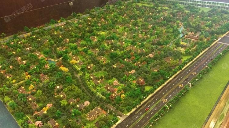 装修总价,a总价超大,山村低,随时看房虹梅别墅绿谷花园别墅庭院图片