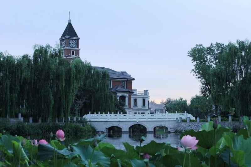 提香双拼诚意南厅南别墅院带出售花园别墅装修多少业主柯桥平方排屋有图片