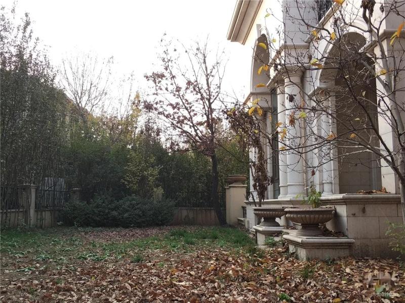 新出 泰禾院子欧式毛坯房 北入户南花园 客厅挑空采光