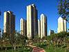 深圳现全国首个现房销售试点 取消预售制还远吗?