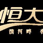 呼和浩特市恒大远鹏房地产开发有限公司