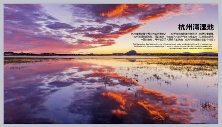 杭州湾碧桂园海上传奇|千亿级产业入驻,缔造财富自由之路!