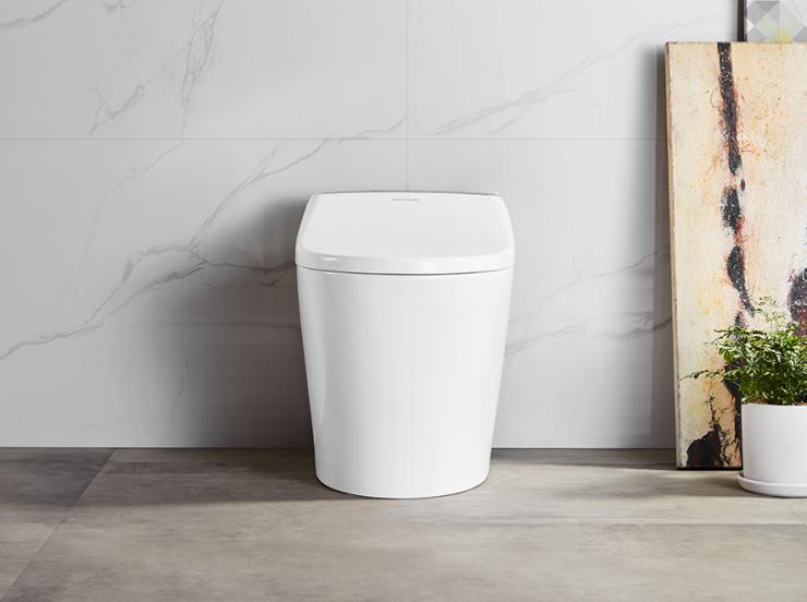 世界厕所日 |盖茨的马桶计划再度引人深思:好马桶很重要!