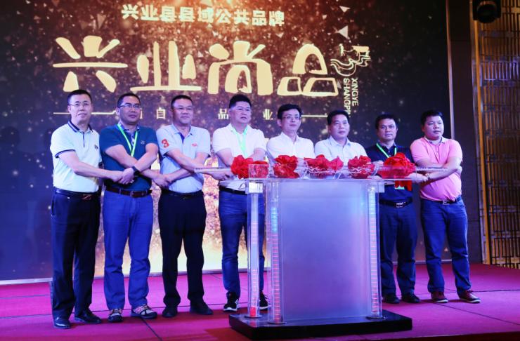 兴业县县域公共品牌发布会暨招商引资项目推介会在东莞市举办