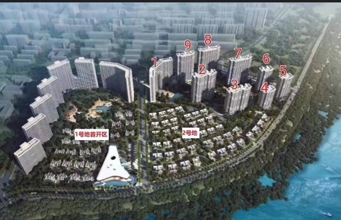 中信国安北海第一城|扬帆,起航——相约红树林,公益健步走活动