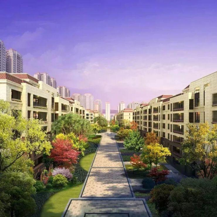 一个百亿级贸易市场,将如何改变自贸新城?