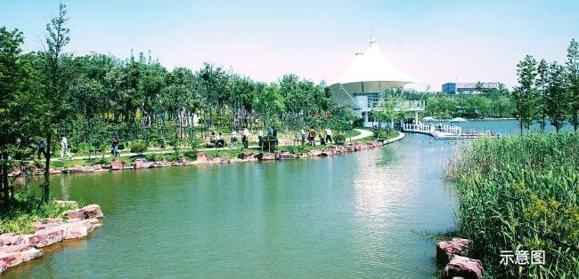 文安全力推进八大绿化工程  立志创建绿色生态城市