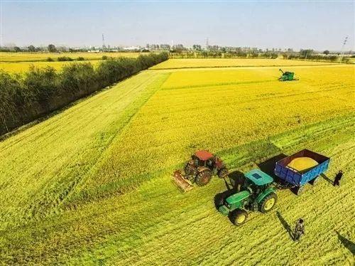 我国农村土地制度改革完成阶段性目标