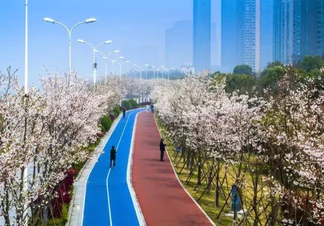 萧山区2011年平均收入_2017年浙江11市人均可支配收入出炉你达标了吗?