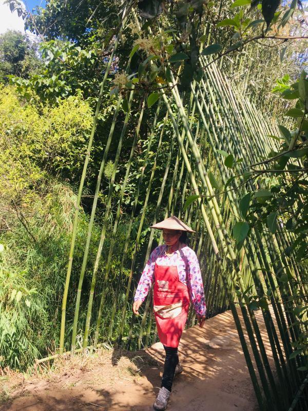 """玛御谷稻田艺术季:对""""在地性""""艺术的一种探索"""