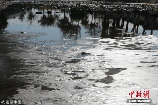 2022年北京永定河将重现鱼跃河塘百鸟觅食美景