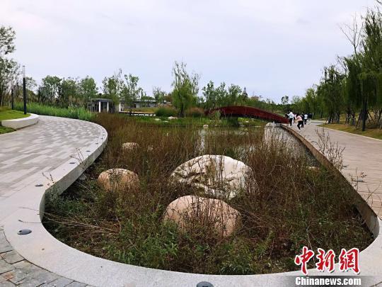 上海中心城区最大开放式绿地建设迎新进展